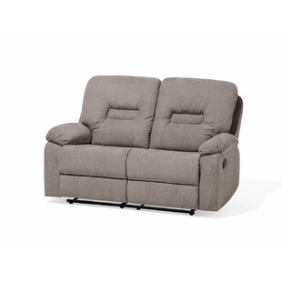Mount Barker 2 Seater Reclining Loveseat by Red Barrel Studio