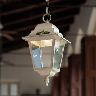 Mayflower 1-Light Outdoor Hanging Lantern By August Grove