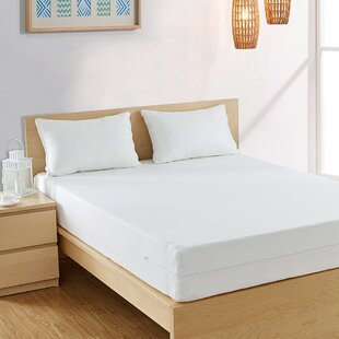 Bargoose Home Textiles Allergy Care Hypoallergenic Mattress Protector