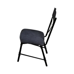 Carvell Industrial Water Pipe Solid Wood Dining Chair (Set of 2) by 17 Stories