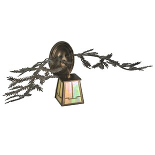 Best Reviews 1-Light Outdoor Wall Lantern By Meyda Tiffany