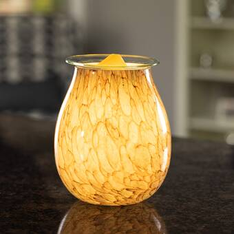 Candle Warmers Etc Golden Fir Illumination Fragrance Porcelain Wax Warmer Reviews Wayfair