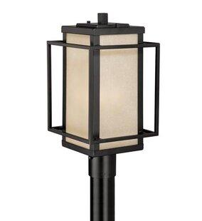 Guinn Outdoor 1-Light Lantern Head by Brayden Studio