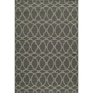 Halliday Gray Indoor/Outdoor Area Rug by Beachcrest Home Bargain