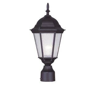 Busse 1-Light Outdoor Lantern Head by Darby Home Co