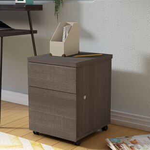 Schaper 1-Drawer Mobile Vertical Filing Cabinet
