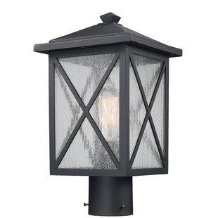 Erikson 1-Light Lantern Head by Alcott Hill