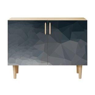 Brayden Studio Nava 2 Door Cabinet