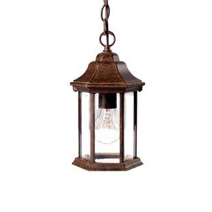 Charlton Home Pruitt 1-Light Outdoor Hanging Lantern