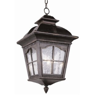 Freeborn 3-Light Outdoor Hanging Lantern