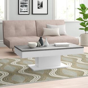 Granny Coffee Table With Storage By Zipcode Design