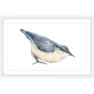 'Nuthatch Bird' by Thimble Sparrow Framed Painting Print