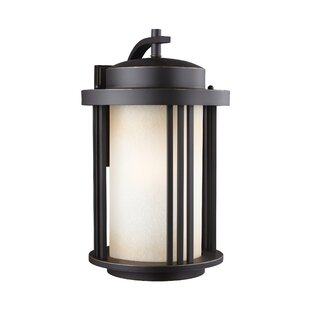 Dunkley 1-Light Outdoor Wall Lantern by Darby Home Co