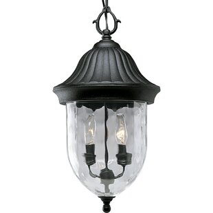 Triplehorn 2-Light Hanging Lantern