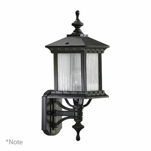 Astoria Grand Schroeder 1-Light Outdoor Sconce