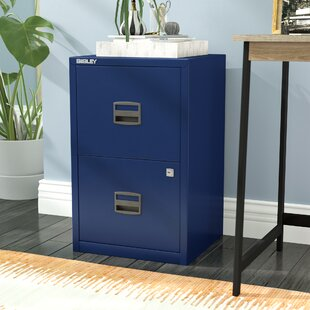 Castaneda 2-Drawer Vertical File by Wrought Studio