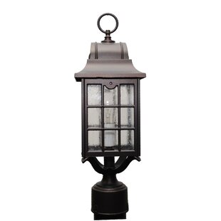 Reviews Archard 1-Light Lantern Head By Darby Home Co