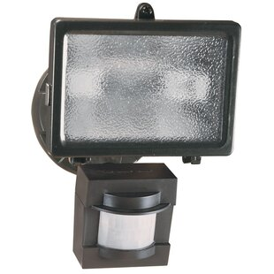 Inexpensive Motion Activated 1-Light Flood Light By Heath-Zenith