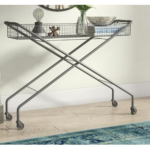 Wymore Rolling Metal Basket Console Table ByTrent Austin Design