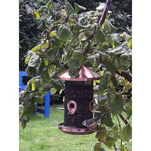Panorama Tube Bird Feeder By Sol 72 Outdoor