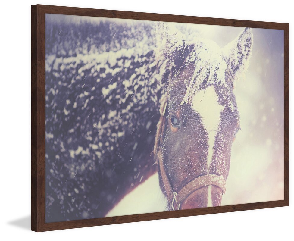 Marmont Hill \'Curious Horse\' Framed Painting Print & Reviews | Wayfair