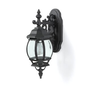 Astoria Grand Talon 1-Light Outdoor Wall Lantern