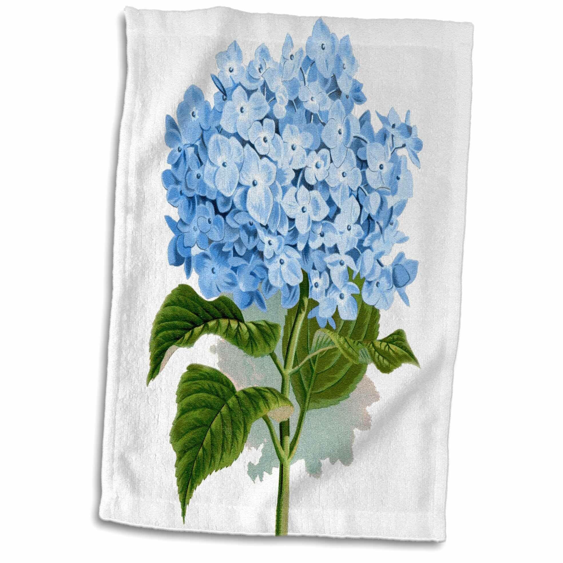 Symple Stuff Meriwether Hydrangea Flowers Art Floral Drawing Summery Spring Antique Image Hand Towel Wayfair