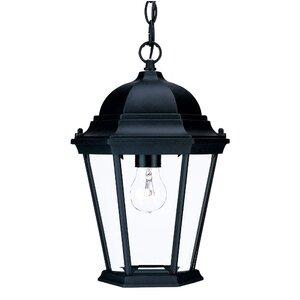 Bellver Traditional 1-Light Outdoor Hanging Lantern