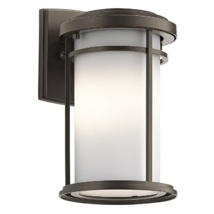 Best Scot 1-Light Outdoor Sconce By Ivy Bronx