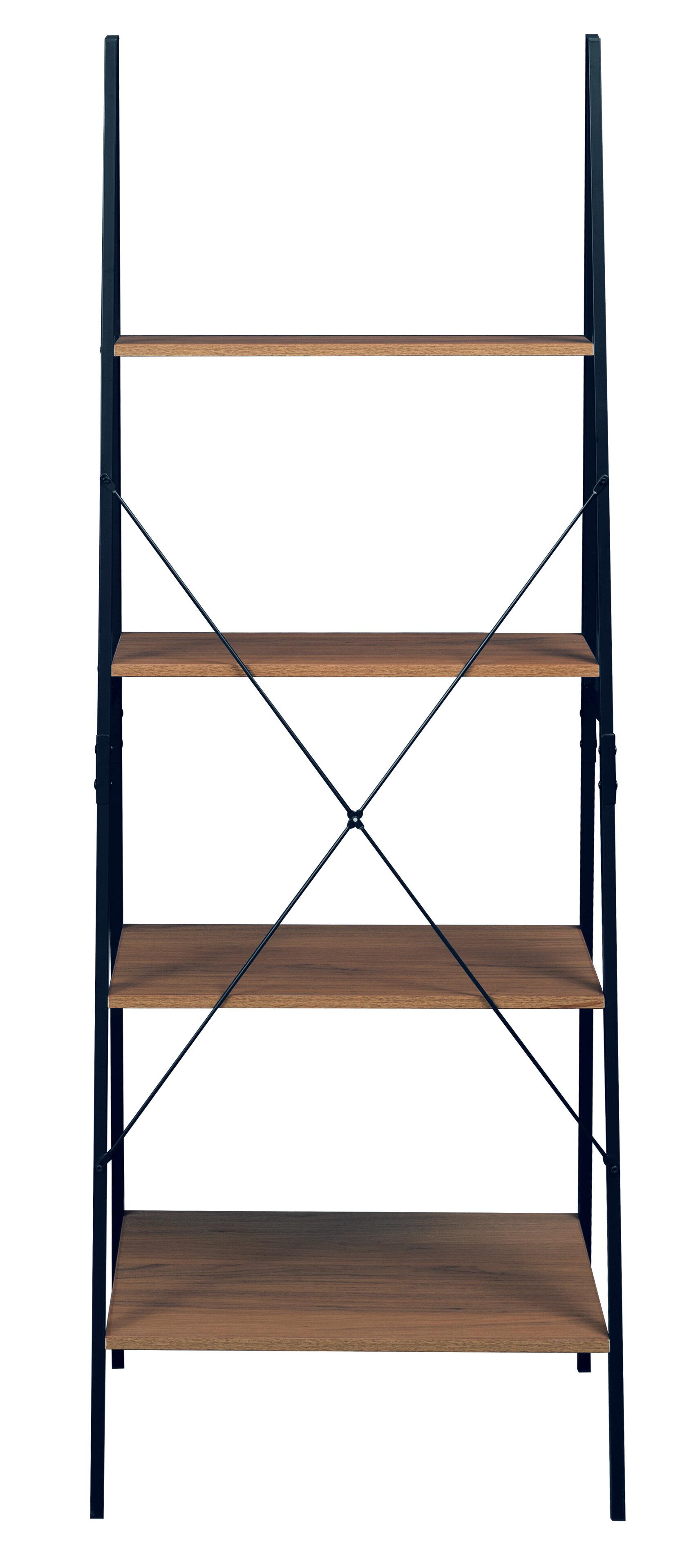 Taniya 72 Ladder Bookcase