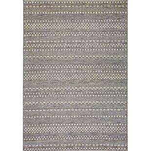 Pennock Light Gray Indoor/Outdoor Area Rug