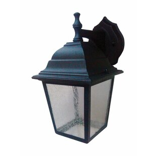 Nelsen LED Outdoor Wall Lantern