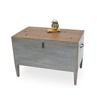 Trunk Tray Table with Storage