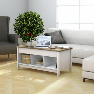 Alina Lift Top Coffee Table with Storage by Highland Dunes SKU:AA345168 Order