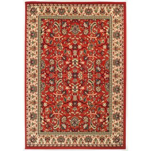 Find Alexandria Burnt Polypropylene Red Area Rug By Sol 72 Outdoor