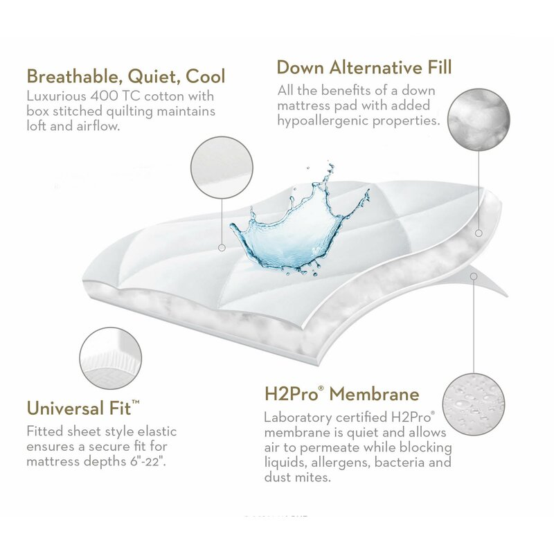 Malouf Quilt Tite Hypoallergenic Waterproof Mattress Protector Wayfair