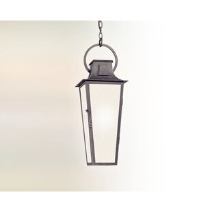Darby Home Co Sutton 1-Light Outdoor Hanging Lantern