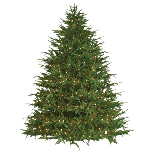 the holiday aisle 9 green fir artificial christmas tree with 1400 lights with stand reviews wayfair - 9 Christmas Tree