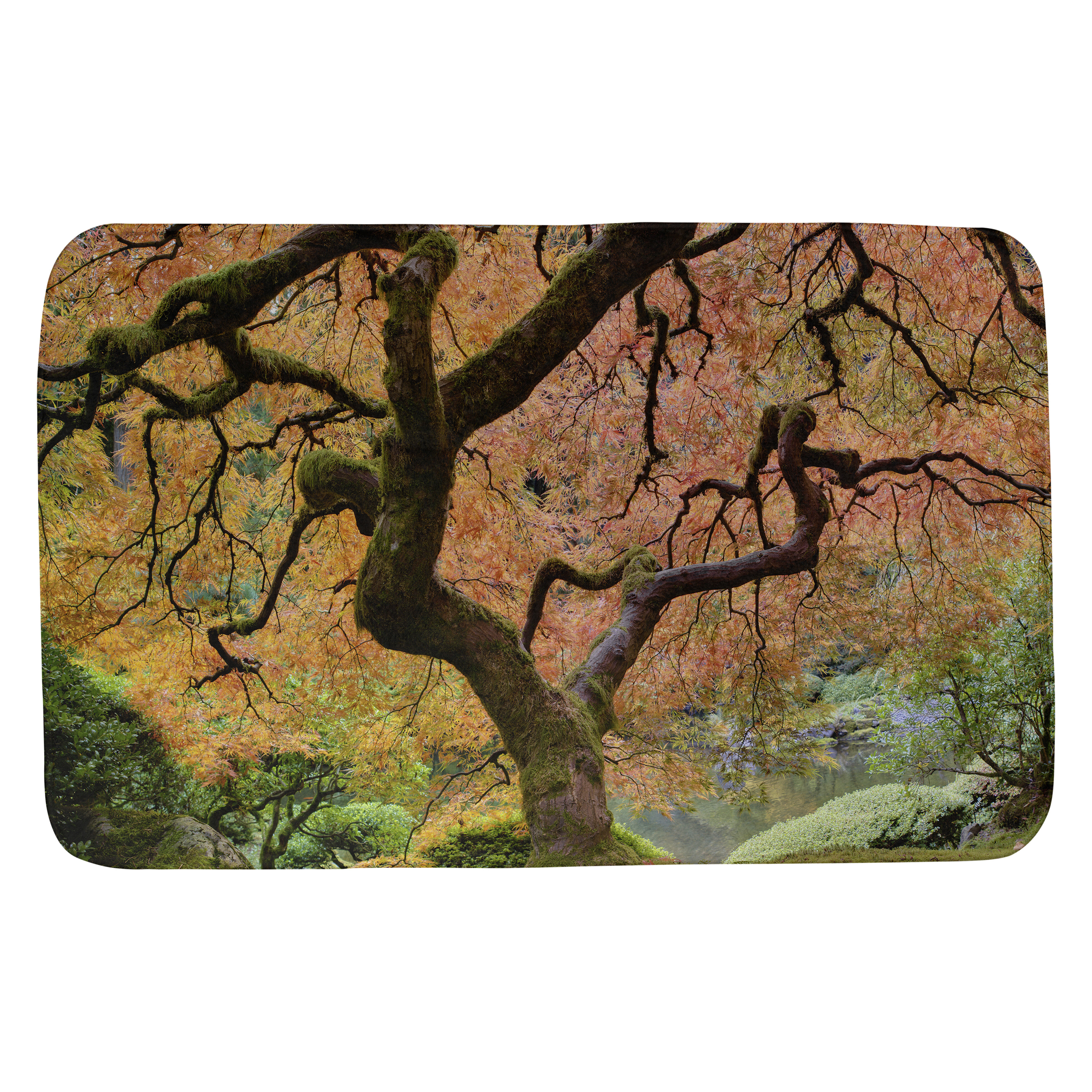 Winston Porter Oram Anese Maple Tree