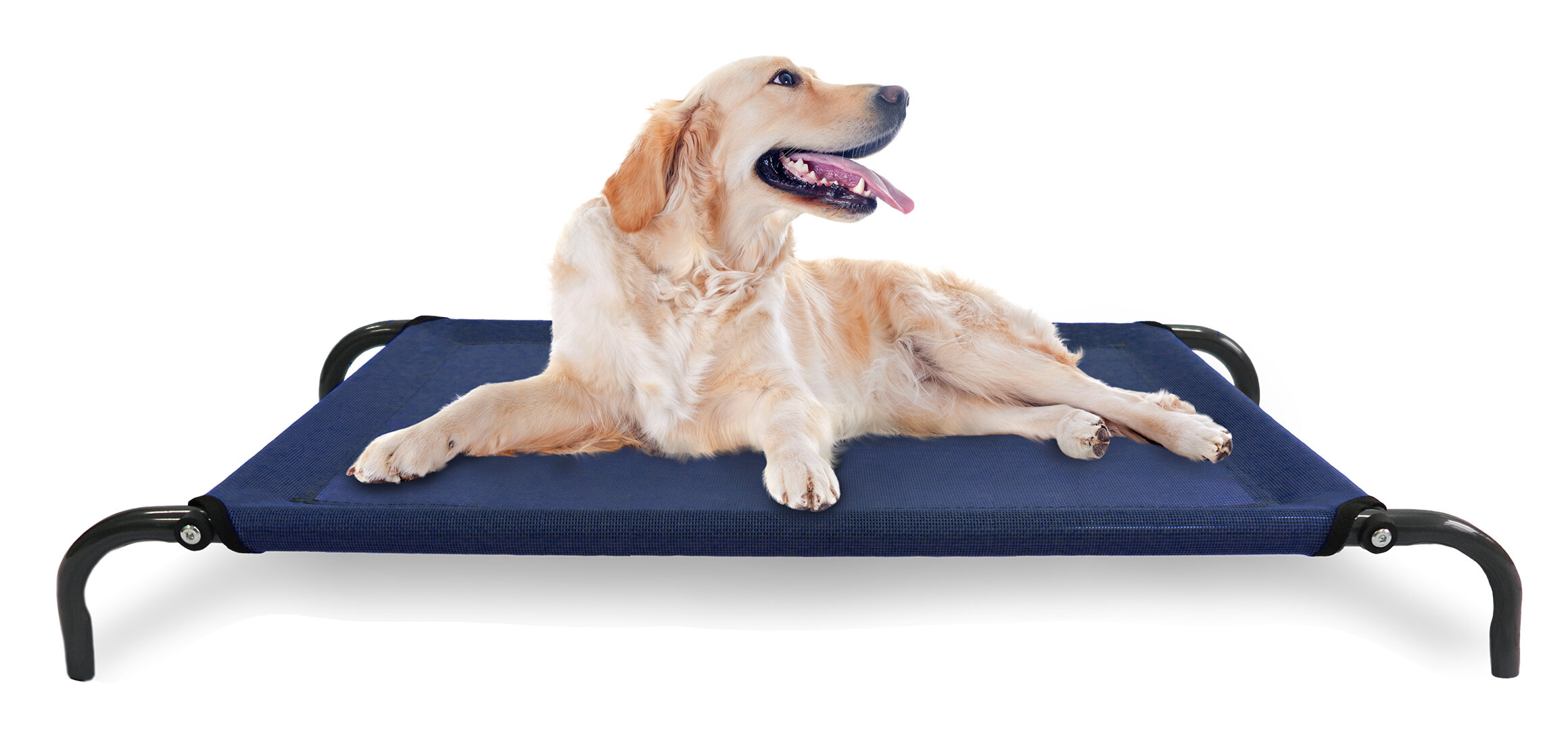 feature memory products com bed chew with w frontpet lounger xl orthopedic bubbles backrest cover and dog padded pet foam removable slip proof