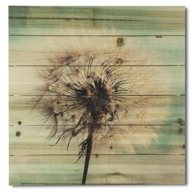 7ddeab1e7b0 Gallery 57 'Dandelion Wishes' Photographic Print on Wood & Reviews | Wayfair