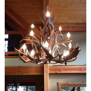 Loon Peak Doliya Antler Fallow/Mule Deer 15-Light We have associated to option Chandelier
