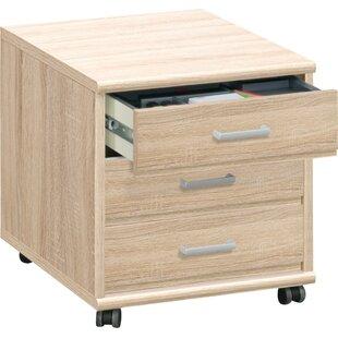 Latitude Run Waltrip 3-Drawer Mobile Vertical Filing Cabinet