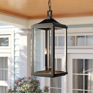 Charleston 3-Light Outdoor Hanging Lantern by Sol 72 Outdoor