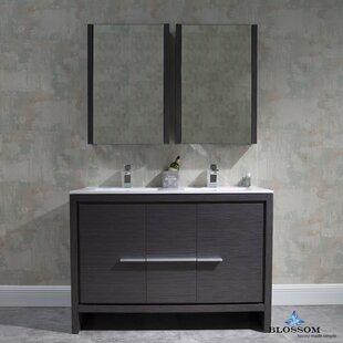 Artemis 47 Double Bathroom Vanity Set with Mirror By Ivy Bronx