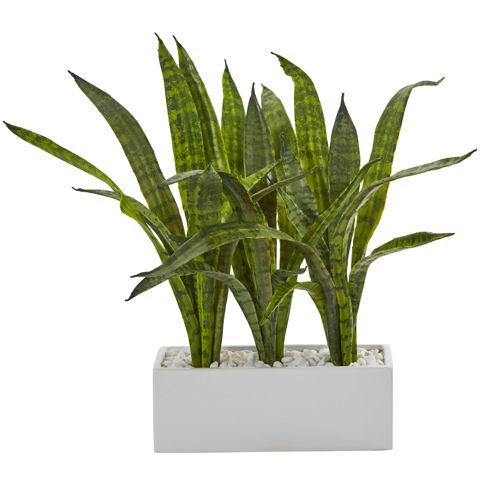 Orren Ellis 14 Artificial Sansevieria Plant In Planter Wayfair