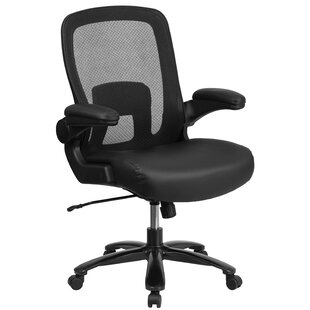Pyron Ergonomic Mesh Task Chair by Latitude Run