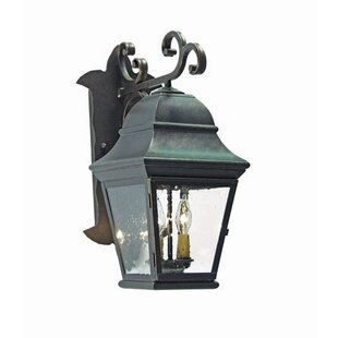 Top Hagen 2-Light Outdoor Wall Lantern By 2nd Ave Design