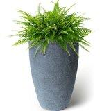 Callan Self-Watering Plastic Pot Planter