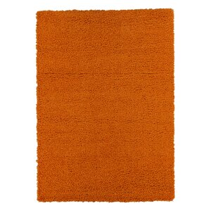 Cozy Orange Indoor/Outdoor Area Rug